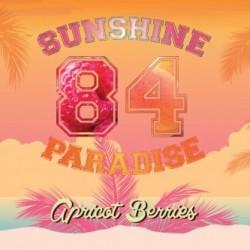 Concentré Abricot Berries - Sunshine 84